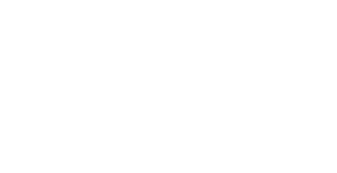 >PAL Airlines