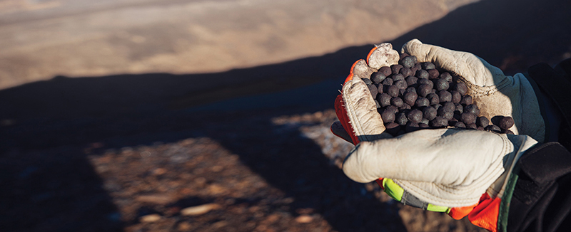 Gloved hands holding Iron Ore pellets